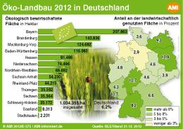 ... Daten und Fakten zum Thema Hochzeit in Deutschland... Mehr erfahren