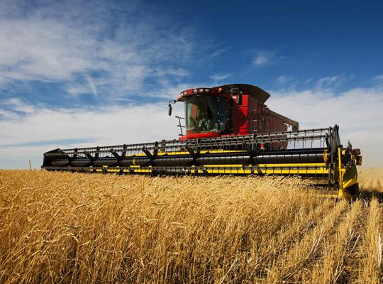 Landwirt: Isuzu Deutschland